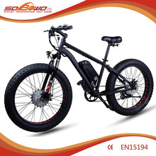 Electric bike china 2015 Powerful E-bike S19 Hub Motor Electric Bike OEM