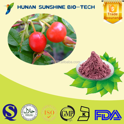100% Natural Rose hip extract / 4:1/10:1/20:1 Rose hip powder