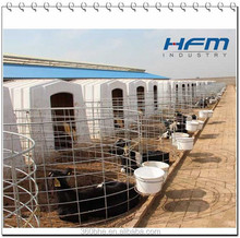 Weaning Calves Cages