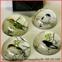 Clear Half Round Ball, Clear Half Sphere, Clear Half Round Plastic Ball