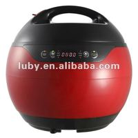 Electric Pressure Cooker Y30-70WY