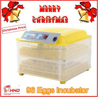 Full Automatic Multi-function Egg Tray Incubators For Poultry