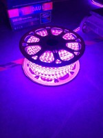 White SMD3528 100M/Reel High Voltage LED Strip Light