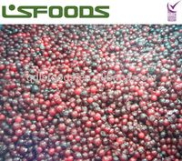 IQF frozen lingonberry for jam