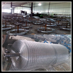 Cheap price bird cage welded wire mesh roll
