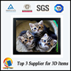 high quality 3d plastic picture with PS frame