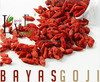 Organic goji berries--2014 new crop