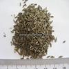 High Quality Spices & Herbs Cumin Seeds