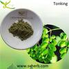 Herb Medicine 10:1 moringa leaf extract powder