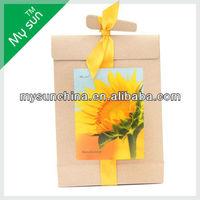 Kraft Paper Bag Planter,With Silk Ribbon,Carry Paper Bag.