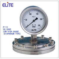 P-13 All SS capsule gauge with diaphragm seal