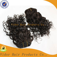 Wet and Wavy Clip In Hair Extensions