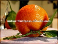 New Year 2015 Special Offer - Fresh Fruits - Mandarin Orange from Pakistan