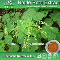 Supplier by Nutramax - Nettle Seed Extract Powder 4:1 ~ 20:1 by TLC