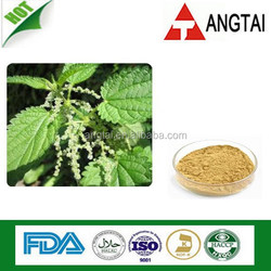 Nettle Leaf Extract/Stinging Nettle leaf extract 4:1; 5:1; 10:1