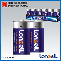 LONCELL Brand D size 2900mAh 1.5v high power battery