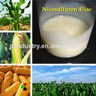 Alta atividade de milho terra herbicidas nicosulfuron 4% sc