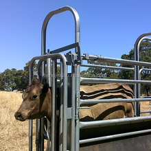 livestock fence supplies Cattle Crush for farmers