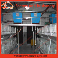 poultry cages for chickens with automatic feeder