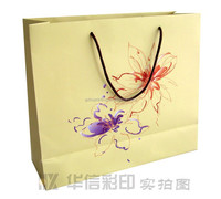 Luxury Beige Paper Bag/Paper Shopping Bag/Advertising Paper Gift Bag foR Clothes