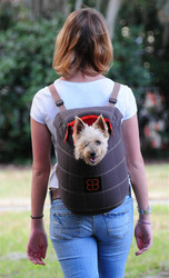 Expandable Pet Dog Carrier Front and Backpack Pet