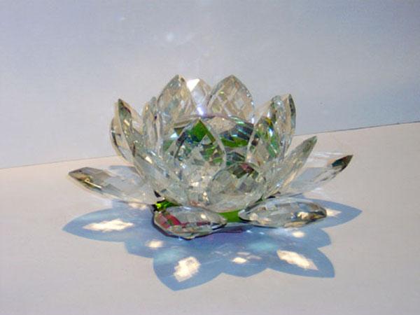 crystal lotus-3.jpg