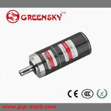 10W 22MM 12V/24V BLDC 250w brushless dc motor with high quality