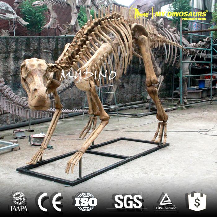 maiasaura skeleton.jpg