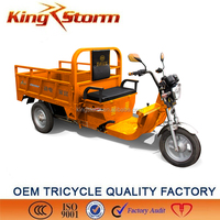 Supply 1200W hilly area cargo electric tricycle
