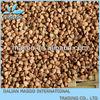 2012, new crop, China, Mainland origin buckwheat good quality