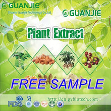 2015 GMP factory superior semen cuscutae extract/dodder seed extract with free sample