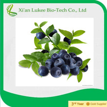 2015 Blueberry plant extract with 25% Anthocyanidins or ratio extract