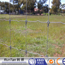 Long life hot dip galvanized hinge joint fixed knot field fence