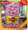 Frozen normal white garlic,natural and from shandong