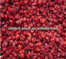 natural schisandra p.e/ Schisandra Herb Powder
