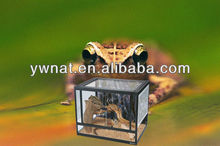Rectangle glass pet tank, Reptile cages terrariums, Reptile/Terrarium pet tank