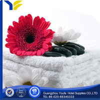 embroidered manufacter polyester/cotton tablet shaped compressed towel/washcloth