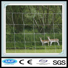 Hot dipped galvanized wire fencing horses (factory exporter)