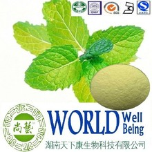 Hot sales plant extract Mint extract/Menthol 99%/Food additive Free sample