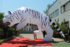 2015 HOT!!! white 4m high*5m length inflatable tiger animal/model/cartoon/replica W527