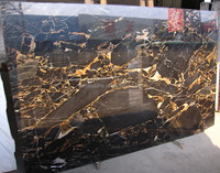 Gold and black potoro natural marble