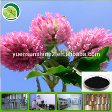 100% Natural Red Clover Flower Extract
