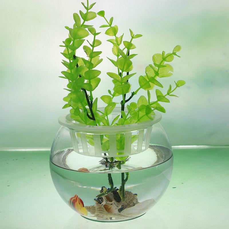 Pas cher gros ballon rond en forme de r servoir aquarium for Aquarium rond pas cher