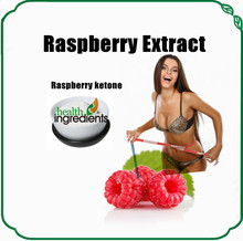 GMP Factory Supplier free samples Raspberry leaf extract raspberry ketones