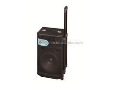 Portable DJ stage system super bass speaker with USB/SD/electronic guitar function