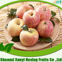 China fuji apple, red star apple, golden delicious apple