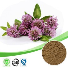 Hot sale Red clover extract/Isoflavones 60%/Formononetin/Reduce cholesterol Free sample