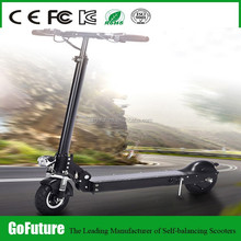 GoFuture 2015 Innovative Electric Skateboard 350w With Ce
