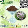 Natural timol, carvacrol, el ácido rosmarínico tomillo extracto