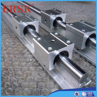 Quality Guaranteed supplier Linear bearing slide units for conveyor (manufacturing conveyor) devices
